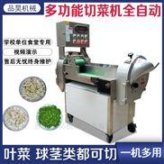 商用多功能切菜机全自动双头变频食堂用