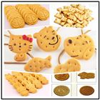 无添加蔗糖健康粗粮饼干营养健康生产线