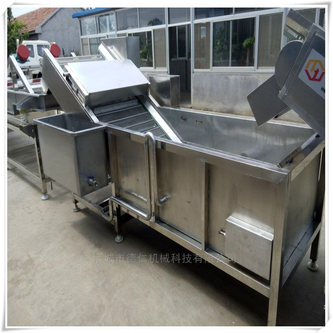 蔬菜漂烫机-预煮机