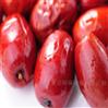 红枣烘干机西安厂家包安装售后