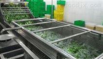 蔬菜、大米、荞麦全自动大型清洗线选购指标