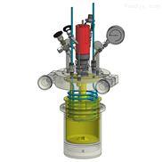 标准型高压反应釜