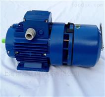 BMA紫光交流刹车电机