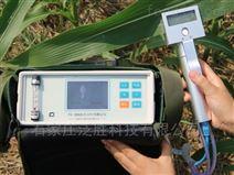 玉米光合作测量仪