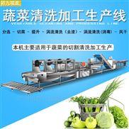 涡流洗菜机蔬果加工流水线