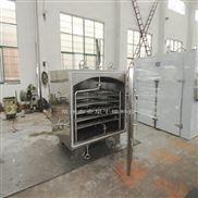 制药专用真空干燥箱 食品方形真空烘箱