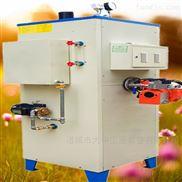 工業小型立式電熱水鍋爐節能商用蒸汽發生器