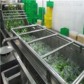 茶树菇清洗机菌类清洗设备