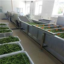 魚腥草自動提升清洗機果蔬清潔機