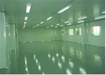 生成净化车间、实验室1250㎡