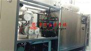 供应苹果脆冻干机 苹果真空冷冻干燥机