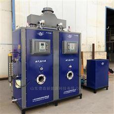 DS-600燃气蒸汽发生器