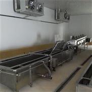 玉米清洗机 新疆大枣多功能果蔬清洗设备