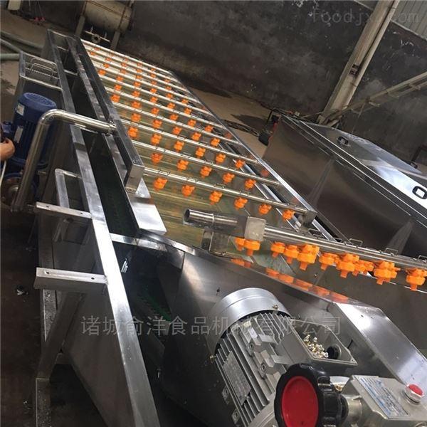 果蔬清洗加工设备 供应全自动洗菜机