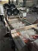 气泡喷淋清洗机 水果大型洗果机厂家定制