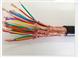ZA-DJF46PVP计算机电缆6*2*1.0mm2