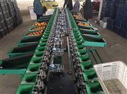 猕猴桃选重机价格 多功能果蔬分选机厂家