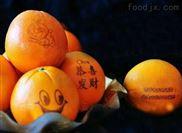 鞍山水果印字机 苹果橙子南果梨西瓜印刷机