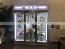 北京供应便利店冷藏柜主要哪些品牌