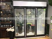 广州便利店冷柜三门柜市场报价是多少