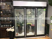 江苏冷藏立式展示柜专卖店地址在哪