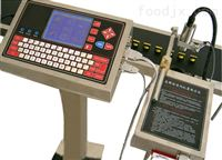 E180S中山全自动印码机高解像喷码一机两用