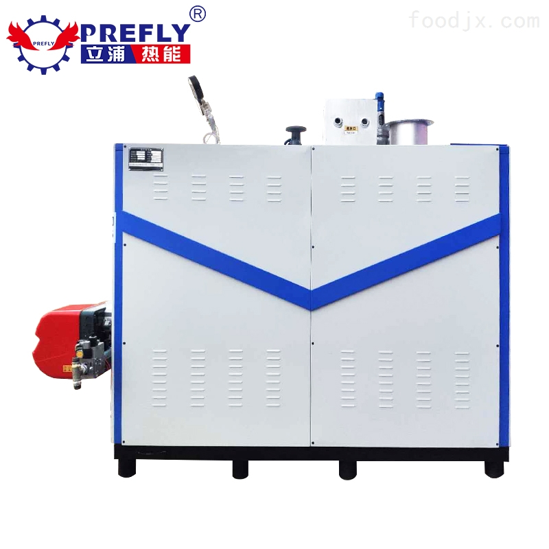 500公斤燃气蒸汽发生器
