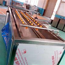供應全自動噴淋式渦流豌豆清洗機 廠家