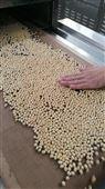 隧道式豆类微波烘焙设备厂家