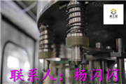 CGF纯净水灌装机设备厂家