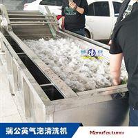 4000木耳气泡清洗机