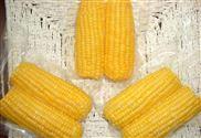 鲜玉米连续拉伸真空包装机