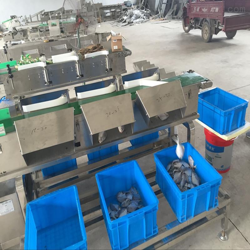 海蛎子重量分选机 生蚝分级机可定做