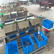高效海蛎子重量分选机 生蚝分级机可定做