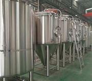 小型自酿小麦啤酒设备