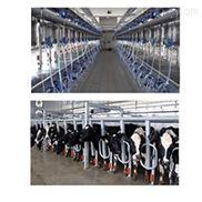 供青海共和乳品机械和门源挤奶机