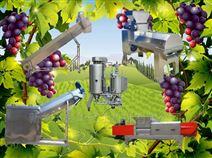 不銹鋼葡萄酒機械生產線