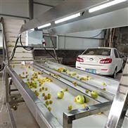 食品輸送機水果挑選設備