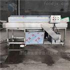 毛豆清洗機凈菜加工設備