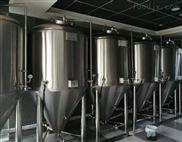 精酿啤酒设备场地布置要求,啤酒设备厂家量身定制