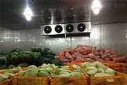 15噸蔬菜保鮮冷庫造價