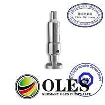 進口油用安全閥(德國奧萊斯OLES閥門品牌)