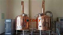 100L啤酒精酿设备