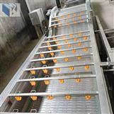 蔬菜气泡清洗机净菜加工专用设备价格