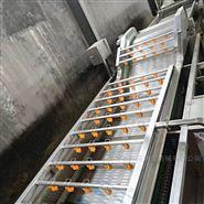 红薯毛辊清洗机专业制造厂家