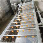 红枣烘干设备气泡清洗机生产厂家价格