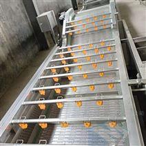 黄瓜气泡清洗机-咸菜加工流水线设备
