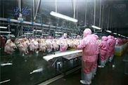 兰州活鸡定点屠宰流水线政府合作厂家