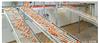 自动产蛋箱