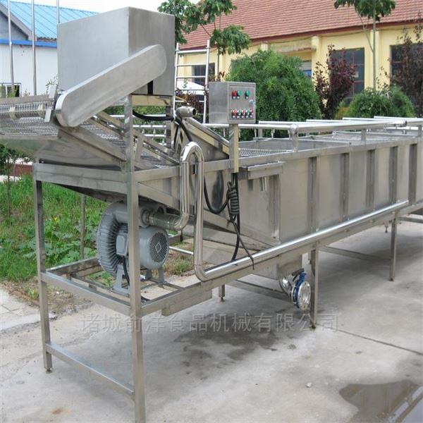 供应金银花烘干清洗机 果蔬加工清洗流水线